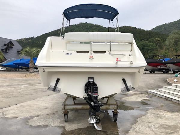 SeaRay 250 DA